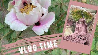 VlogTime || Новый процесс и продвижение старых // Большие изменения в саду