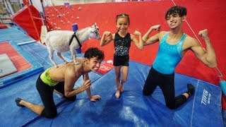 LITTLE SISTER vs. GOAT GYMNASTICS COMPETITION! streaming