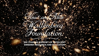 Knut and Alice Wallenberg Foundation 100 years