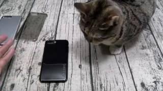 iPhone 7 Plus Incipio Case Lineup