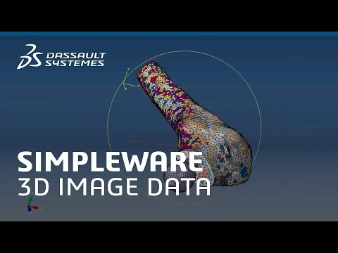 Conversion of 3D Image Data with SIMPLEWARE - Dassault Systèmes