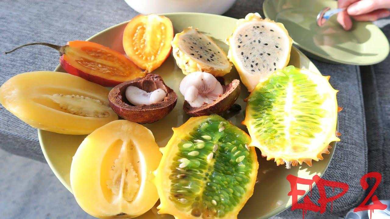 EXOTIC FRUITS (Yellow Pitahaya, Mangosteen, Kiwano etc ...