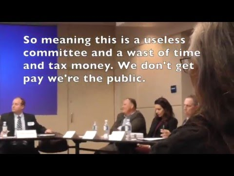Anaheim Pilot Public Safety Board on Homeless issue Part 2