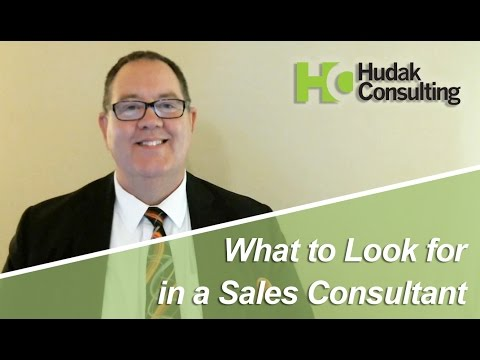 Hudak Consulting: What to Look for in a Sales Consultant
