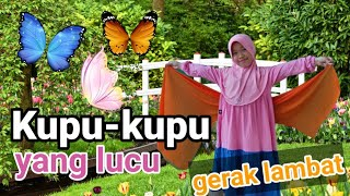 Gerak dan Lagu Kupu-Kupu yang lucu| Tari Kupu Kupu (gerak lambat) SBDP| Meniru gerakan kupu-kupu