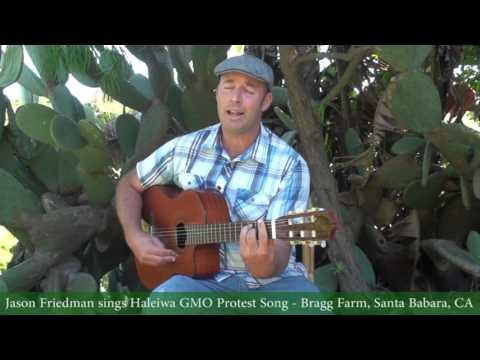 Jason Friedman Sings Monsanto Haleiwa GMO Protest Song