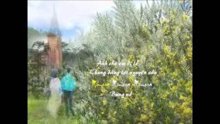 Mimosa thôi nở- Nhất Tuấn - Đan Thọ- 2011