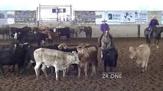5-18-19  ACHA Wknd - Brenham, TX - Paige Kincaid - ZR ONE - Open - 74