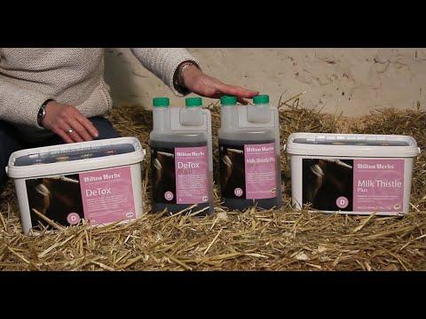 Detox (UK) Milk Thistle Plus (USA)  - Herbal Digestive Supplement for Horses - Product Description