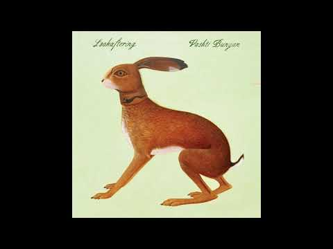 Vashti Bunyan - Lookaftering [2005, Full Album]: Sound Cafe, Nine Mile Burn;  Cava, Glasgow;  Eastcore Studios, London.  October 2005  00:00 01. Lately 02:22 02. Here Before 04:26 03. Wayward 07:34 04. Hidden 10:56 05. Against the Sky 14:07 06. Turning Backs 18:35 07. If I Were 20:52 08. Same but Different 24:29 09. Brother 26:40 10. Feet of Clay 31:10 11. Wayward Hum  Psychedelic folk  © 2005 FatCat Records