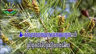 សុំកាន់ដៃមុនរៀបការ ៖ ភ្លេងសុទ្ធ (សុភាព - សោភា) Som Kan Dai Mun Reab Kar Karaoke