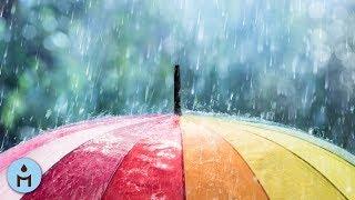Rain Sounds 10 Hours:The Sound of Rain Meditation,Autogenic Training,Deep Sleep,Relaxing Sounds ❀803