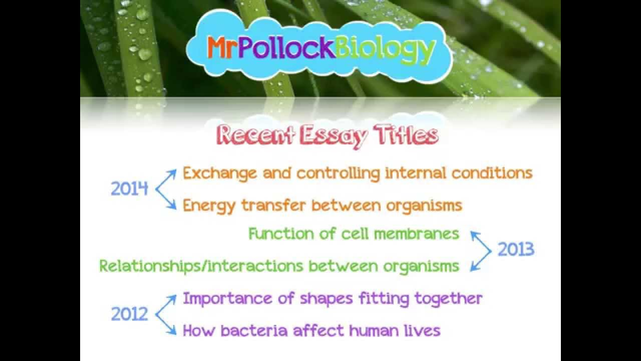 aqa a2 biology writing the synoptic essay ebook Synoptic essay - quick and final essay writing the overcoat nikolai gogol how to complete information deoxyribonucleic acid aqa a2 biology synoptic essay.