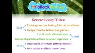 Aqa biology unit   synoptic essay help aqa biology unit   synoptic essay help  What to do if you get stuck and help on getting your essay timing right
