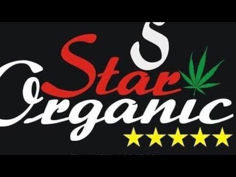 Black Tuna strain review