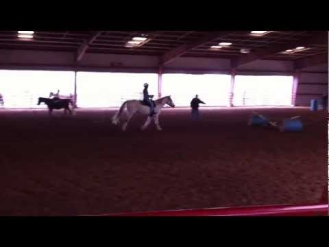 Horse Jumping - Sierra Jumps an Obstacle at Woodhaven Stables