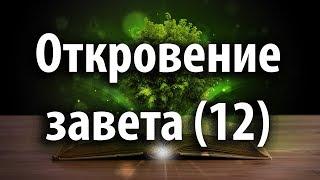 Откровение завета 12. Супружеские отношения. Христианские Проповеди 2020