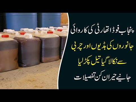 PFA confiscates oil made from animal waste