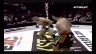 cung le - the best martial artist after bruce lee 2