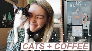 WE WENT TO A CAT CAFE! | Cats + Coffee *SO MUCH CUTENESS*