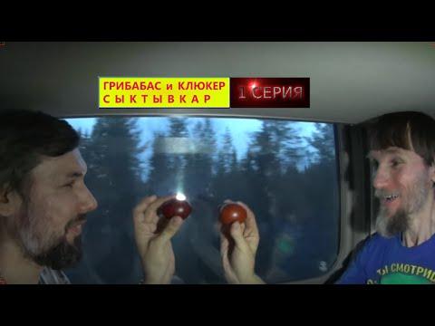 Едем в Сыктывкар-1 серия-Аллилуйя / Тони и Джонни