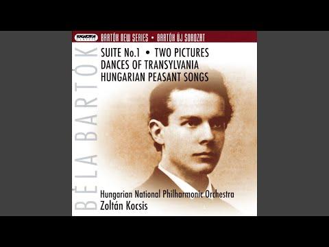 Hungarian Peasant Songs for Orchestra: Hungarian Peasant Dances