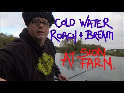 POLE FISHING SION FARM FOR COLD WATER ROACH AND BREAM