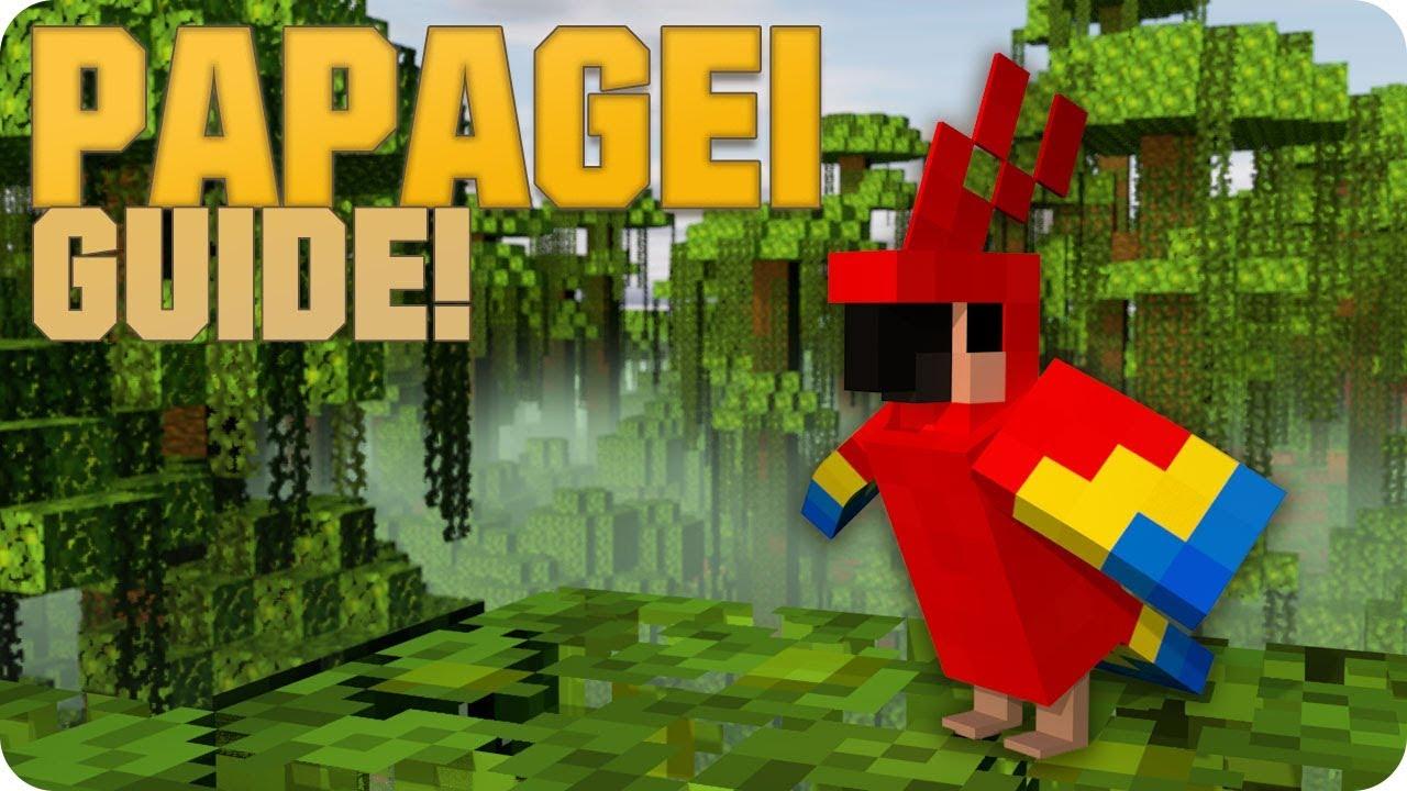 wie zähmt man papageien in minecraft