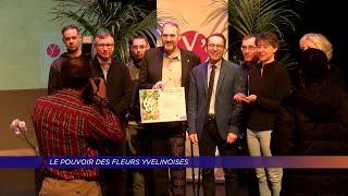 Yvelines | Le pouvoir des fleurs yvelinois