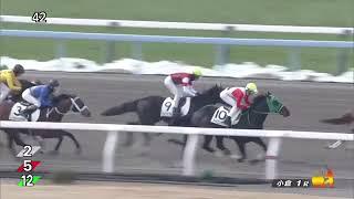 レース結果 http://keibalist.com/race/201810010201/ ウインネプチュー...