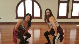 Twerk It Like Miley (Remix)  Mina Myoung Dance Cover