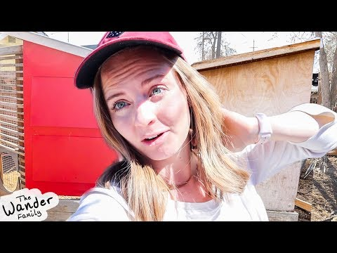 HUGE DIY Backyard Project! Chicken Coop MAKEOVER!!
