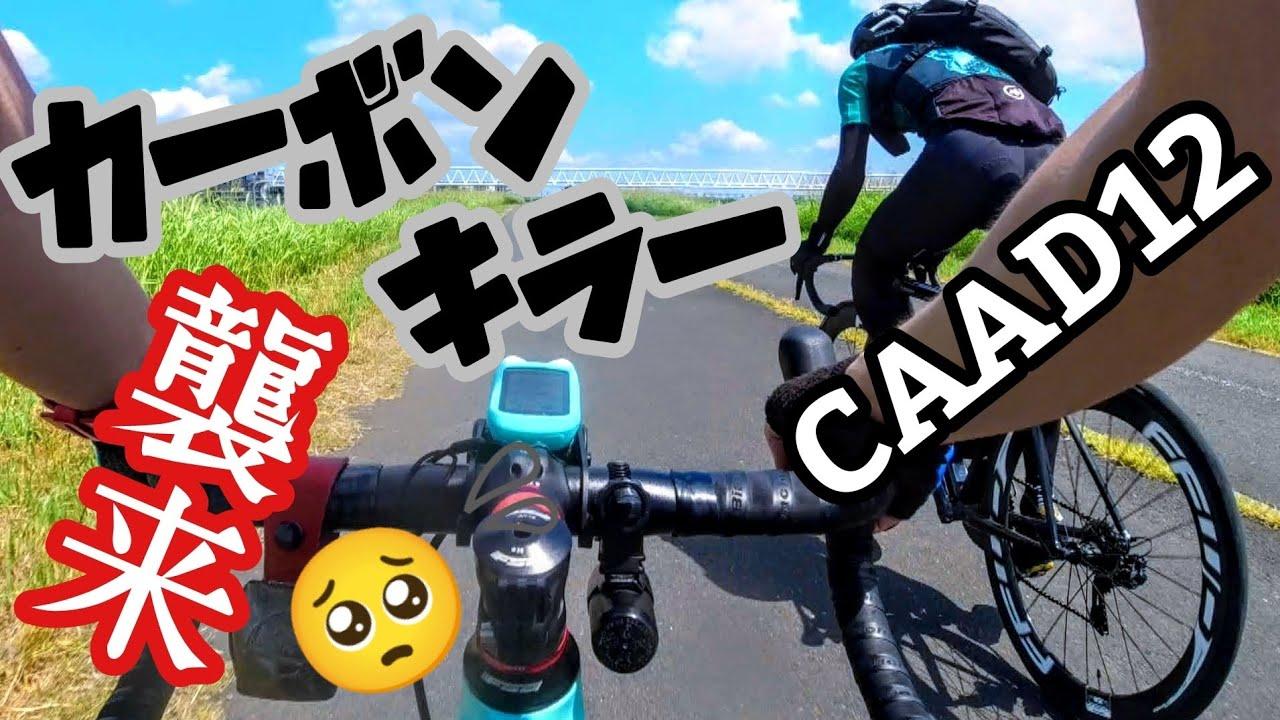 【コラボ】炭素狩り襲来🚴オルトレXR3 vs CAAD12 カーボンキラーの異名は伊達じゃない👊ヒルクライマーKazuhoとオールラウンダー荒北仮面スプリントバトル🔰ロードバイク初心者メントスコーラ