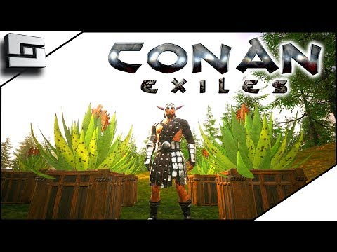 Conan Exiles Gameplay - Aloe Farming for Healing Wraps! E6