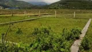 B.P. MARGA, CHAUTHE-PKR ( LAND FOR SALE )