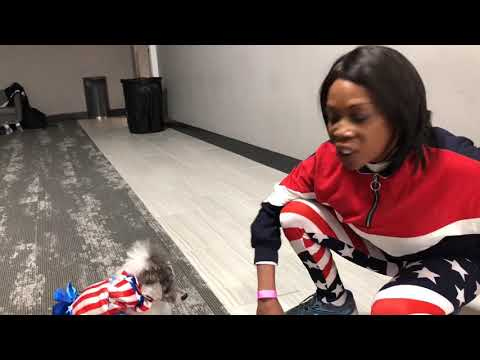 "Bilingual counting dog at ""America's Got Talent' auditions in Metro Detroit"