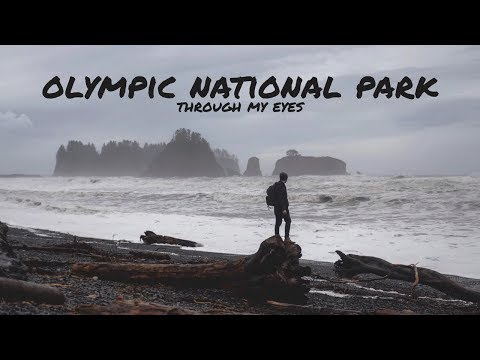 Olympic National Park | Through The Lens