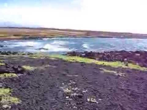 Black Volcanic Rock, Green Moss & Pacific Ocean - Green Sand Beach Hike, Big Island, Hawaii