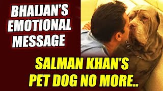 Salman Khan Mourns The Loss Of His Beloved Dog - MY LOVE | Emotional Message