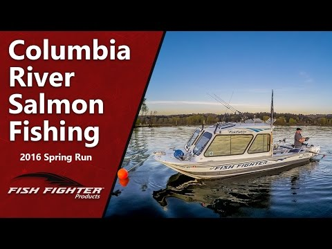 Columbia River Spring Run Chinook Salmon Fishing