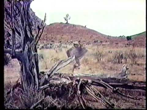 Cutter's Trail  1970 John Gavin, Nehemiah Persoff