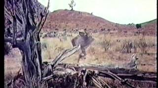 Cutter's Trail (Clip) (1970) John Gavin, Nehemiah Persoff