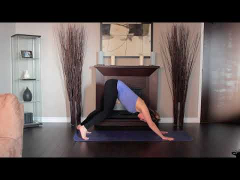 yoga tutorial 05 warm up  downward dog pose/adho mukha