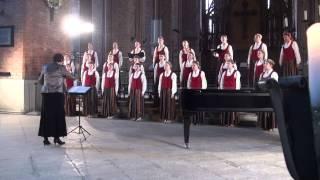 V KONCERTS 06.04.2014 ,Rīgas Sv. Pētera baznīca 00314