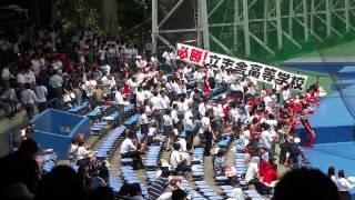2013年7月18日(木)東京都 高校野球 応援 応援歌 ブラスバンド ブラバ...