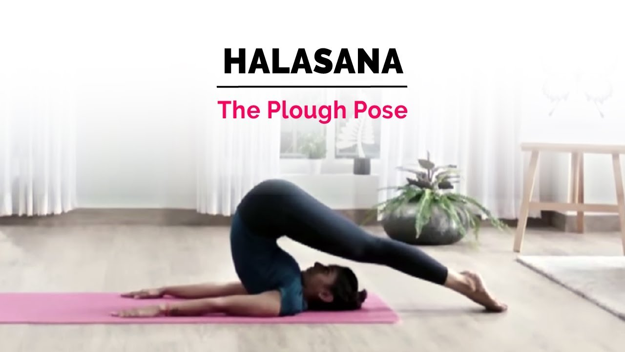 Yoga Exercises to be done daily
