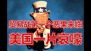 特朗普贸易战第一个恶果来临!美国一片哀嚎!