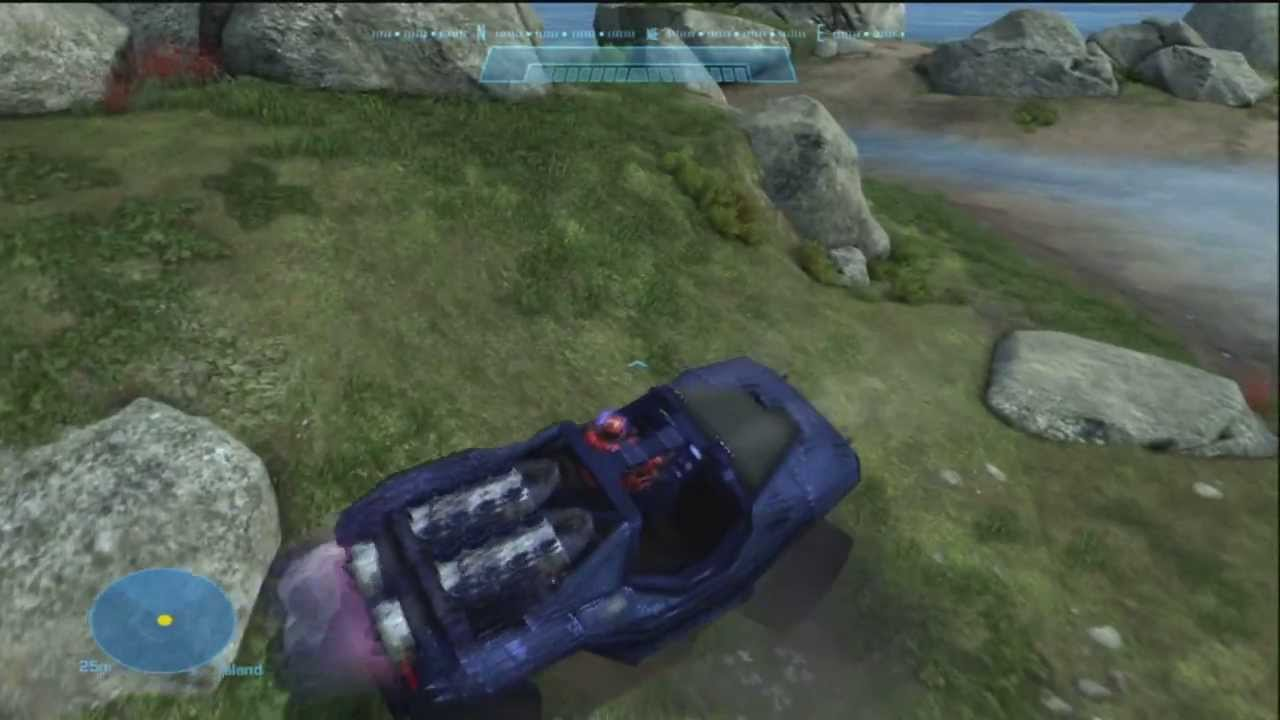 Halo Dog Rescue