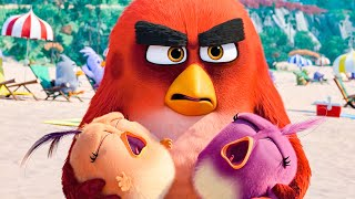 the Angry Birds Movie 2 2019 Full Movie HD