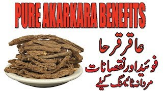 Pure Akarkara Benefits - Mardana Timing Kye leye